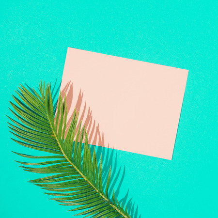 Tropical monstera leaf with pink paper card note on vivid blue background. Minimal summer composition. Flat lay. Imagens