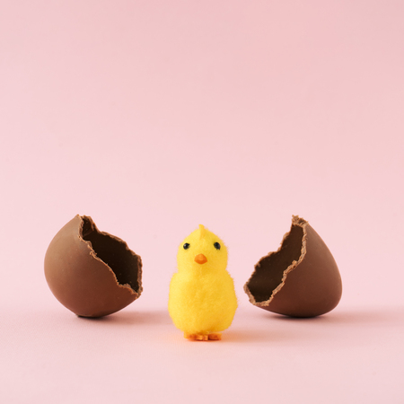 Chick hatched out of chocolate Easter egg on pastel pink background. Minimal holiday concept.