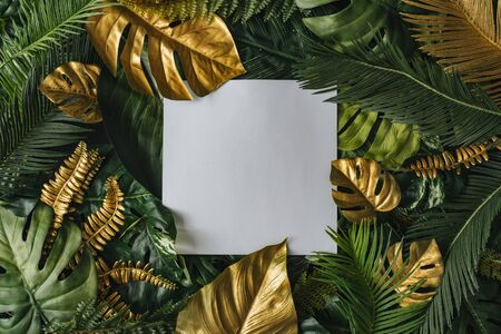 Creative nature background. Gold and green tropical palm leaves. Minimal summer abstract junlgle or forest pattern. White paper frame copy space. Stock Photo