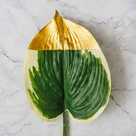 Gold painted tropical leaf on white marble background. Minimal trendy concept. Flat lay.