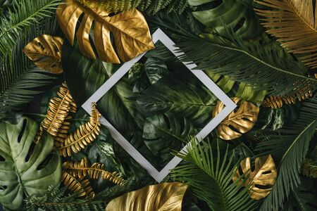 Creative nature background. Gold and green tropical palm leaves. Minimal summer abstract junlgle or forest pattern. White paper frame copy space. Фото со стока