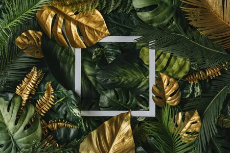 Creative nature background. Gold and green tropical palm leaves. Minimal summer abstract junlgle or forest pattern. White paper frame copy space. Stock fotó - 127506900