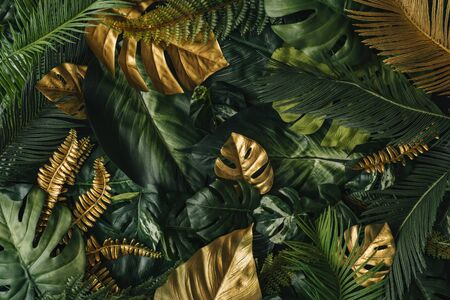 Creative nature background. Gold and green tropical palm leaves. Minimal summer abstract junlgle or forest pattern. Stock Photo