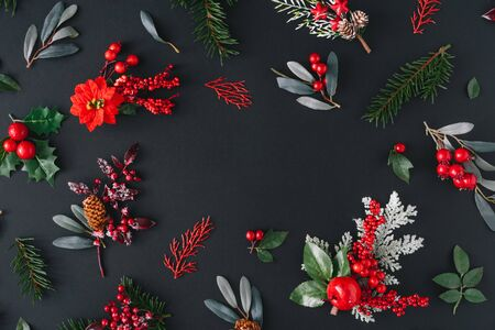 Christmas dark background made of natural winter things. Flat lay pattern with copy space. Standard-Bild - 135493018