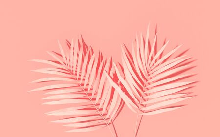 Exotic plants with backdrop. Tropical layout mockup. Background with painted palm leaves. Pink minimal concept art. 3D Render. Imagens
