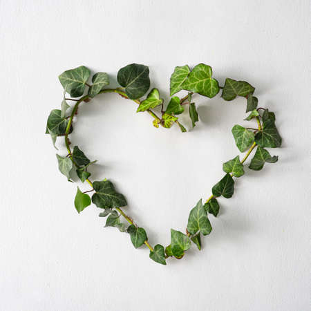 Love valentines or woman's day concept. Heart shape symbol made with natural vine leaves. Minimal flat lay green background. Design or card template.