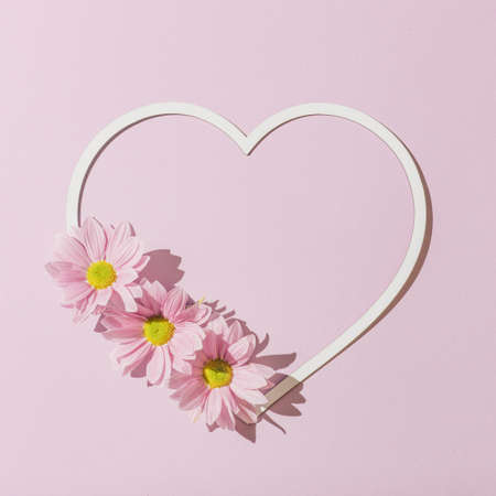 Heart shape copy space with pink daisy flowers. Valentines or woman's day background design. Minimal flat lay nature.
