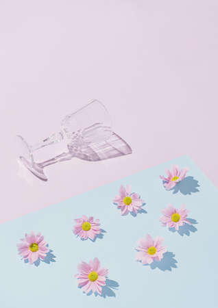 Champagne glass with daisy flowers. Minimal woman's day layout. Natural modern background. Creative copy space.