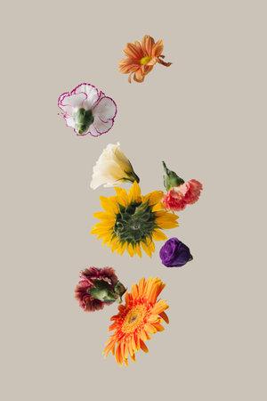 Creative arrangement with various spring flowers against pastel beige background. Minimal nature concept. 版權商用圖片