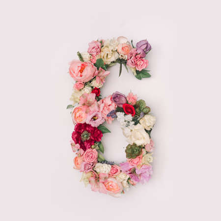 Number 6 made of real natural flowers and leaves. Flower font concept. Unique collection of letters and numbers. Spring, summer and valentines creative idea.