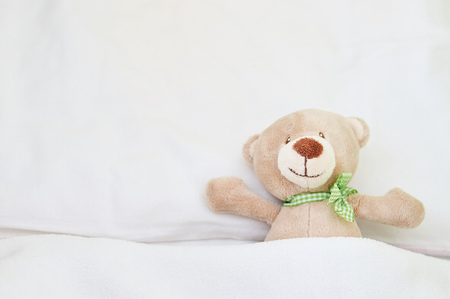 oso de peluche: oso de peluche lindo. Foto de archivo
