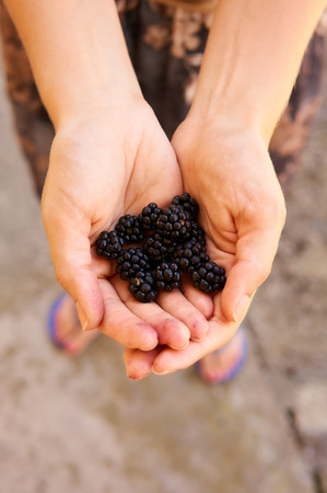 Woman holding blackberries in hands.