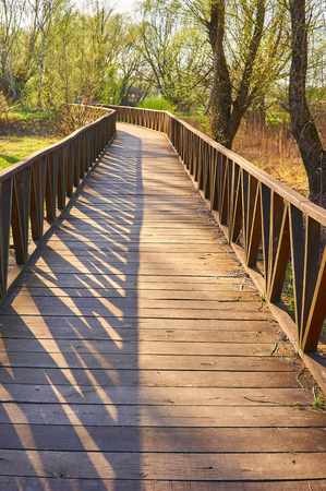 Wooden bridge in Croatia, Slavonia, kopacki rit near city Osijek.