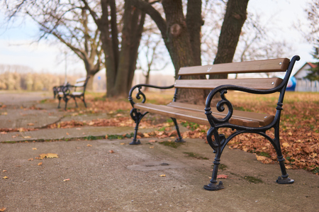 Retro bench in park. 版權商用圖片