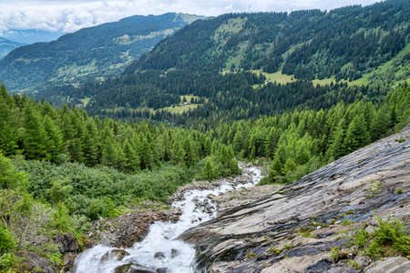 fraser river: fast mountain river among green alpine forest