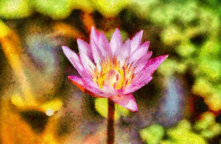 Pink waterlilly impressionism painting illustration