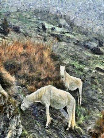 lea: Two white horses feeding in Himalayan mountains of Nepal oil painting post impressionism style