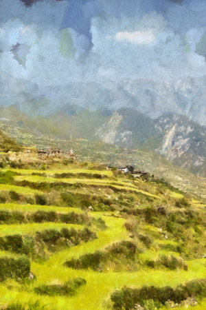 terraced: Lush green terraced mountain fields illustration Stock Photo