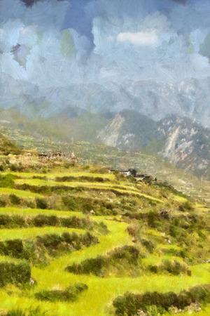 green fields: Lush green terraced mountain fields illustration Stock Photo