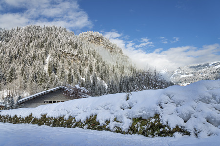 quick hedge: House and mountain forest behind snowy fence