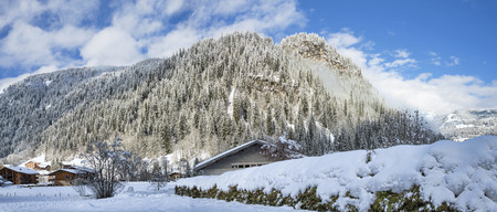 quick hedge: Sunny morning at winter Alpine village with forest and mountains background