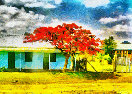 vibrant cottage: Red flowering african christmas tree oil painting