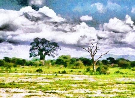 baobab: Baobab and dead acacia tree in african savannah oil painting