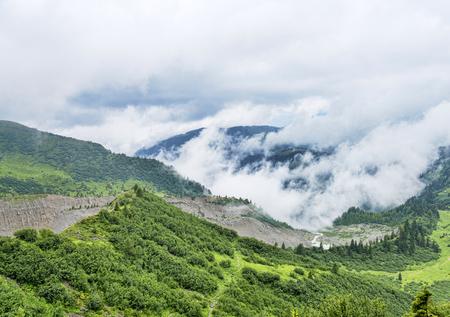 雲の中のアルプス山脈のどこかの緑の草原