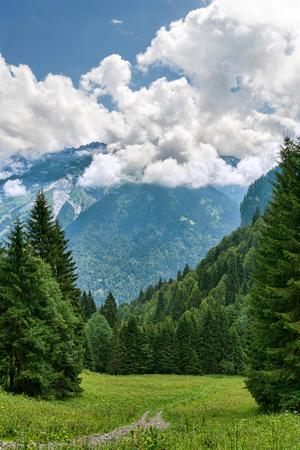 雲や山の間で緑の高山草原