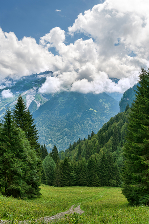 Green alpine meadow among clouds and mountains