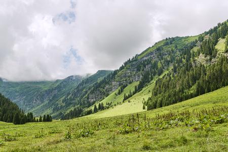 どこかフランスのアルプの高山草原 写真素材