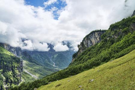 緑の谷と国境を接するロッキーマウンテン峡谷の壁
