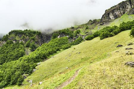 Alpine meadow somewhere in French alpes Banco de Imagens