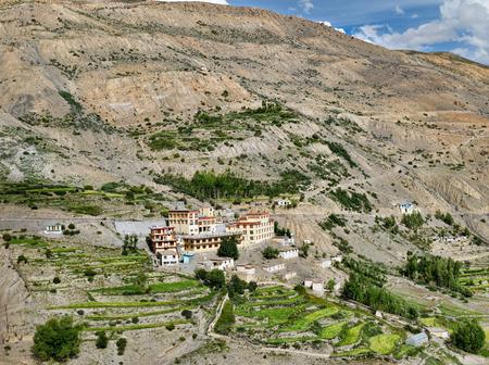 Paddy fields around buddhist monastery buildings Фото со стока
