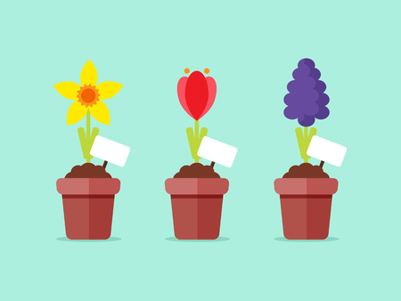 Spring Flowers in Pots. Flat Design Style.