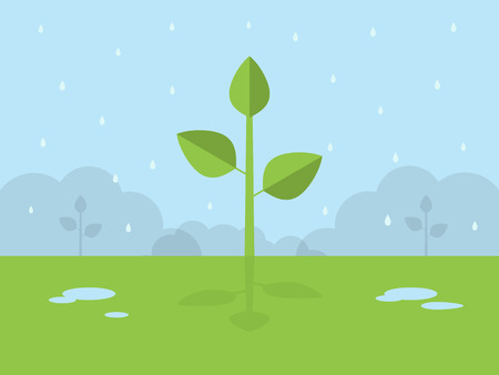 Green Plant Growth. Flat Design Style. Stock Illustratie