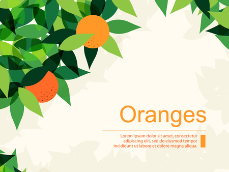 Fresh Background with Oranges and Green Leaves. Flat Design Style. Stock Illustratie