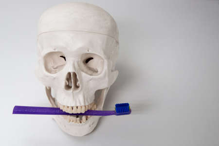 Medical assistant skull proper teeth cleaning, mask, and toothbrush