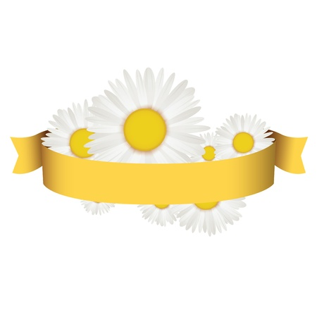 Chamomile with ribbon spring badge Stock Vector - 17010822