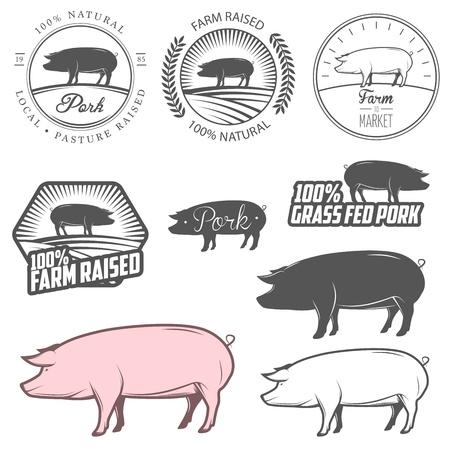 porcellini: Set di etichette di carne di maiale, distintivi ed elementi di design