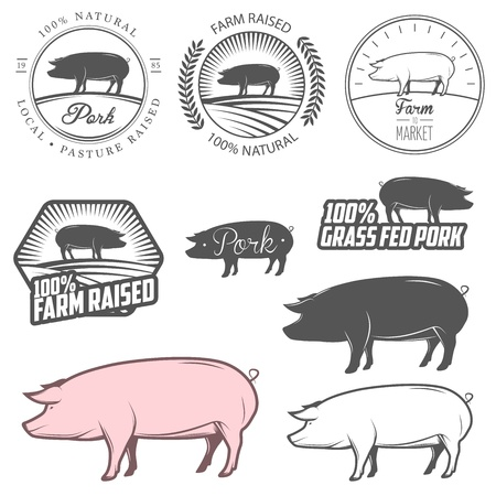 Set of pork labels, badges and design elements