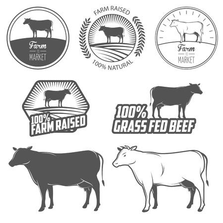 carniceria: Conjunto de etiquetas de carne de vacuno de primera calidad, insignias y elementos de dise?o Vectores