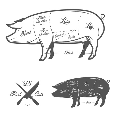 beef cuts: American  US  cuts of pork Illustration