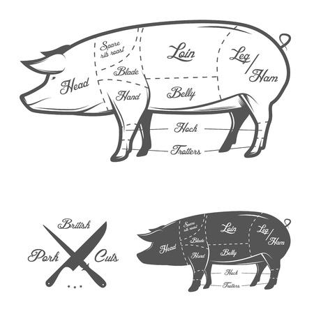 c�telette de porc: Britanniques coupes britanniques de viande de porc