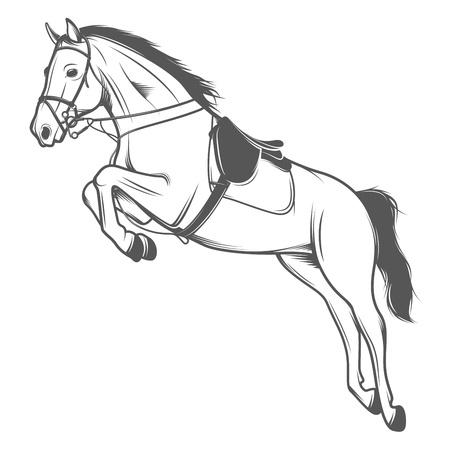white horse: Jumping pole horse isolated on white background