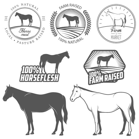 horse meat: Set of horse meat  horse beef, horseflesh  labels and badges