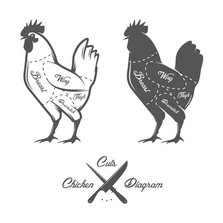 Chicken cuts diagram Ilustracja