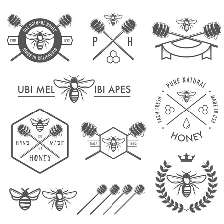 honey bees: Set of honey labels, badges and design elements