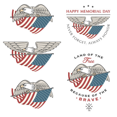 aguila americana: Águila halcón volando con la bandera americana