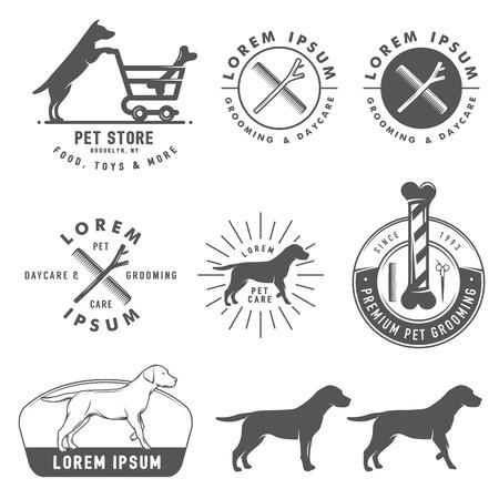 hueso de perro: Conjunto de etiquetas de cuidado de mascotas retro, insignias y elementos de diseño